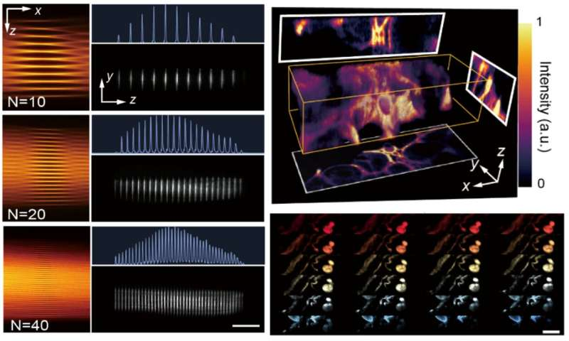 Light-sheet fluorescence imaging goes more parallelized