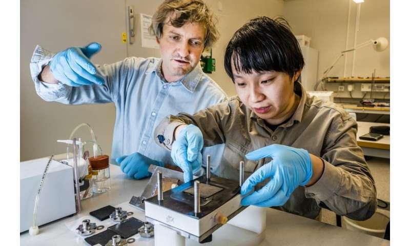 LiU researchers first to develop an organic battery