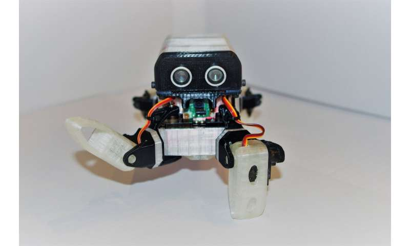 LoCoQuad: An arachnoid-inspired robot for research and education purposes