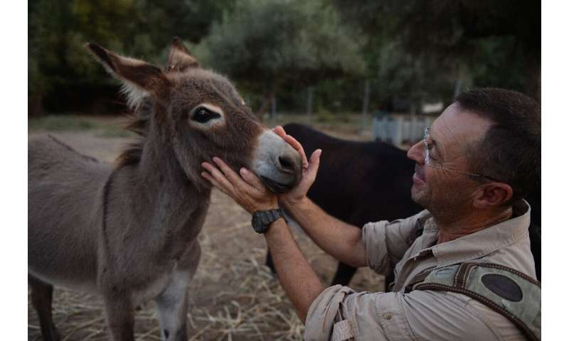 Luis Bejarano, who crossed The Alps with a donkey and a llama, says donkeys interact better with people than horses