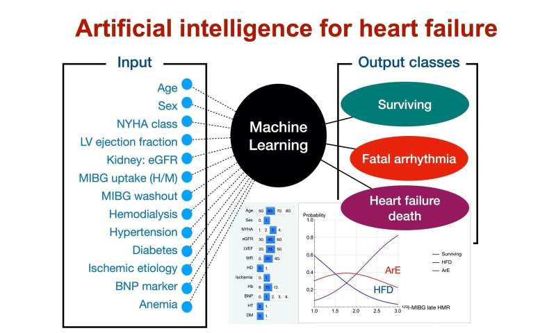 Machining the heart: New predictor for helping to beat chronic heart failure