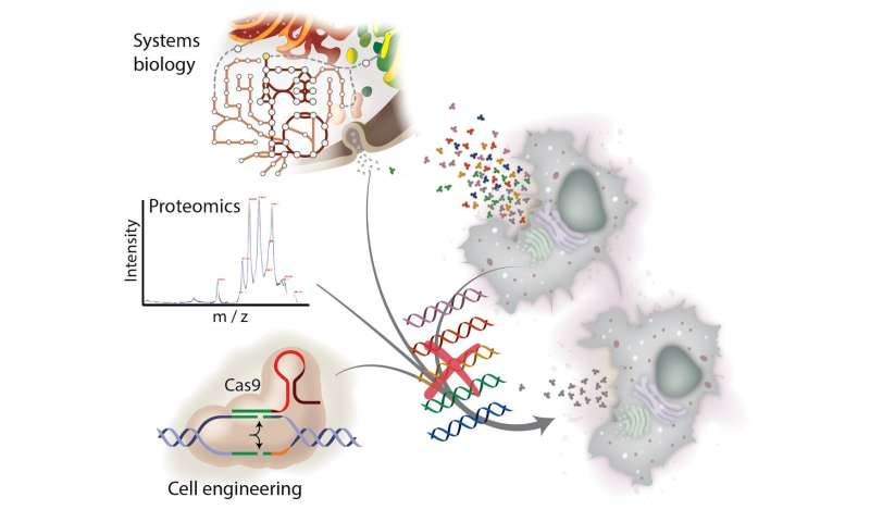 Making recombinant-protein drugs cheaper