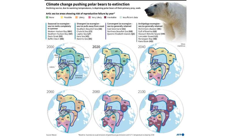 Maps of polar bear populations showing the progression towards extinction by the end of the century