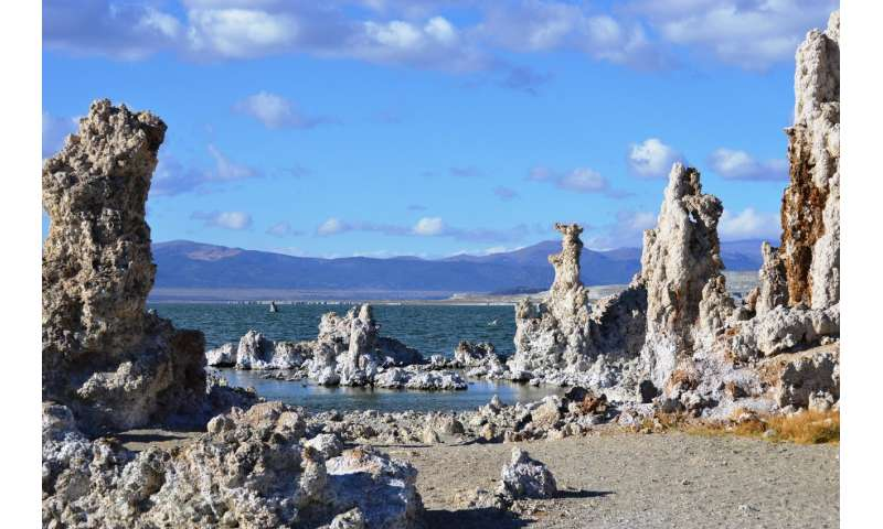 Microbes endure a variety of inhospitable conditions in California's Mono Lake