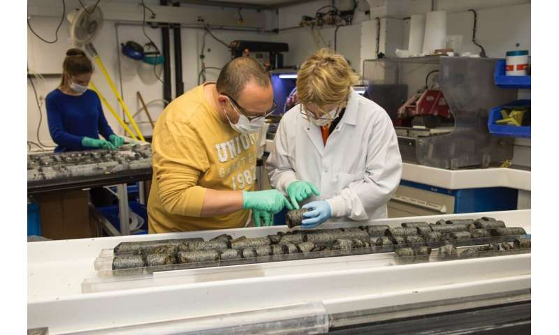 Microbes far beneath the seafloor rely on recycling to survive