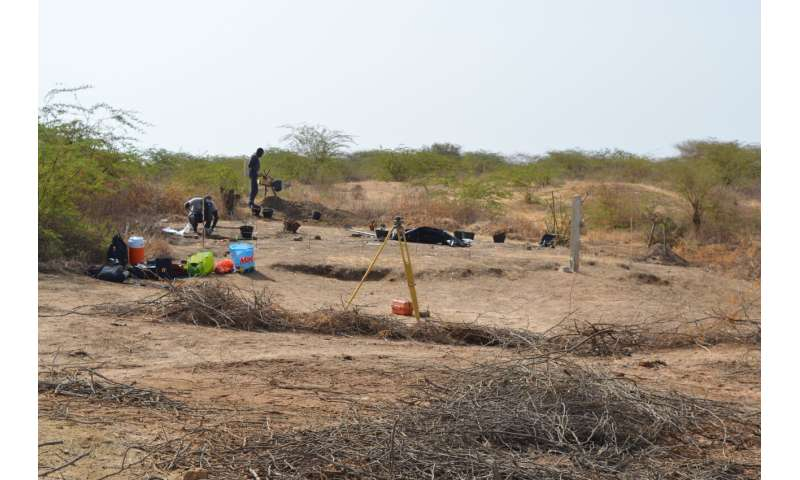 Middle Stone Age populations repeatedly occupied West African coast