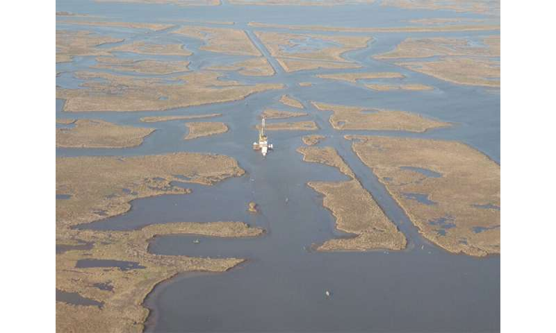 Mississippi Delta marshes in a state of irreversible collapse, Tulane study shows