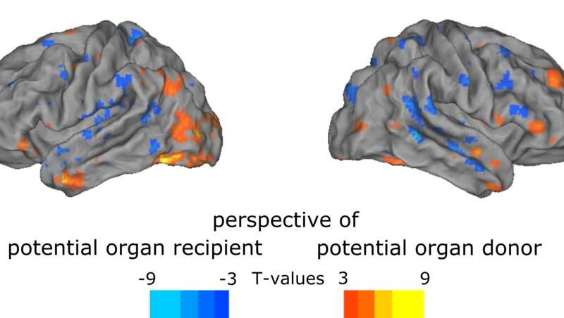 Moral reflection can be seen in brain activity and eye movements