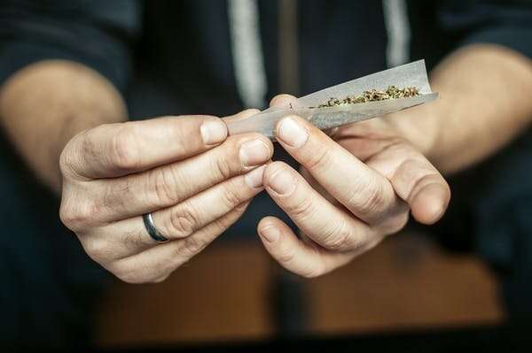 More Australians back legalising cannabis and 57% support pill testing, national survey shows