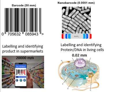 Nanoscopic barcodes set a new science limit
