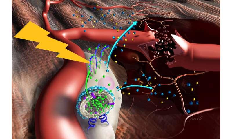 Nanostimulators boost stem cells for muscle repair