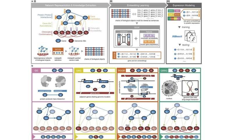 New AI approach investigates multiple gene regulatory mechanisms