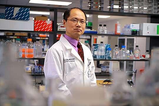 New Biomarker Could Better Predict Diabetic Kidney Disease