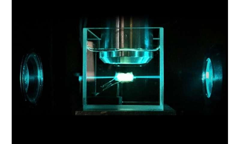 New cancer diagnostics: A glimpse into the tumor in 3D