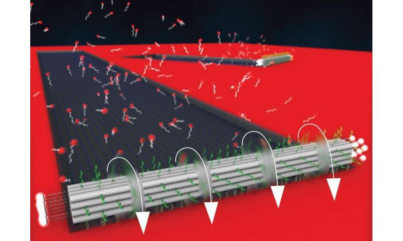 New DNA origami motor breaks speed record for nano machines