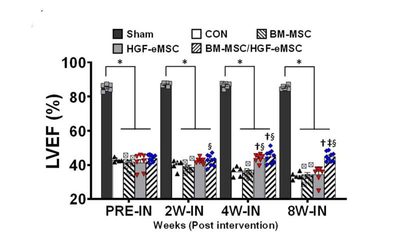 New in vivo priming strategy to train stem cells can enhance cardiac repair effectiveness