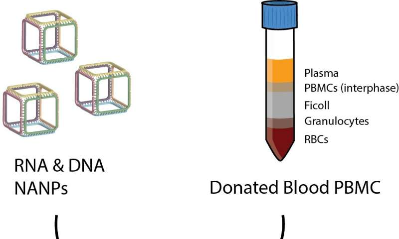 New test method to standardize immunological evaluation of nucleic acid nanoparticles