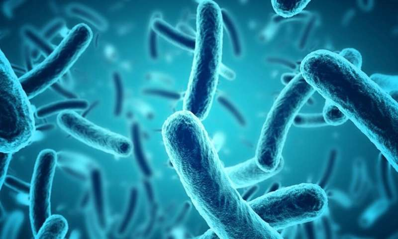New ways to clean homes may help in Ghana's fight against bacterial disease