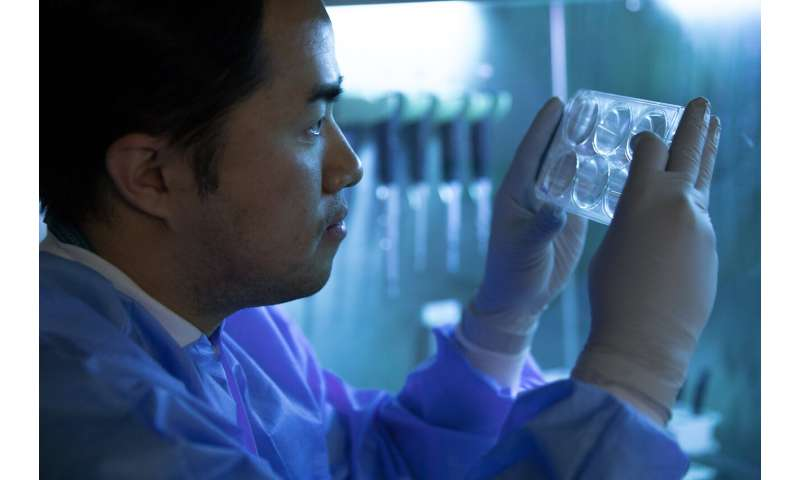 Novel treatment using patient's own cells opens new possibilities to treat Parkinson's disease