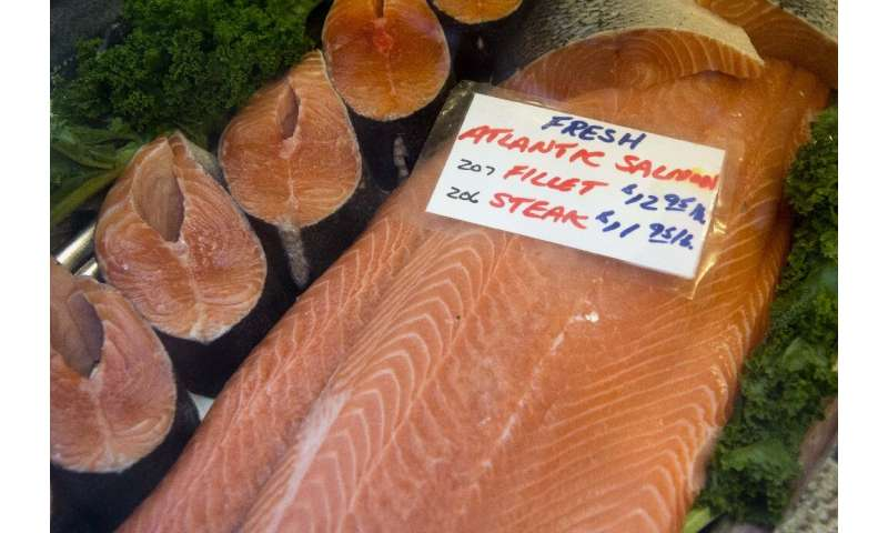 En promedio, el salmón criado en criaderos en la zona de captación de Burrishoole en Irlanda solo produjo un tercio de la cantidad de crías en el norte.
