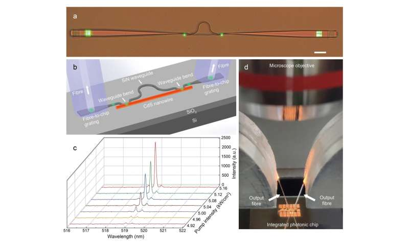 On-chip single-mode CdS nanowire laser