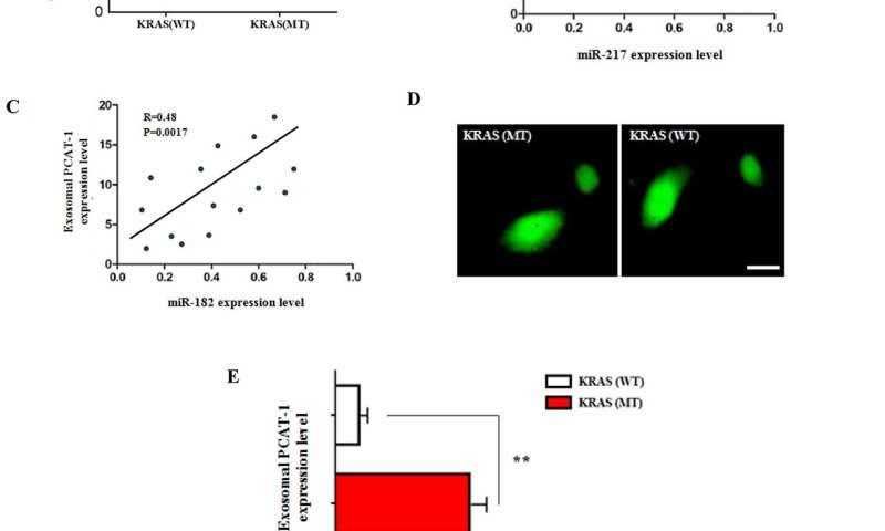 Oncotarget: Exosomal lncRNA PCAT-1 promotes Kras-associated chemoresistance
