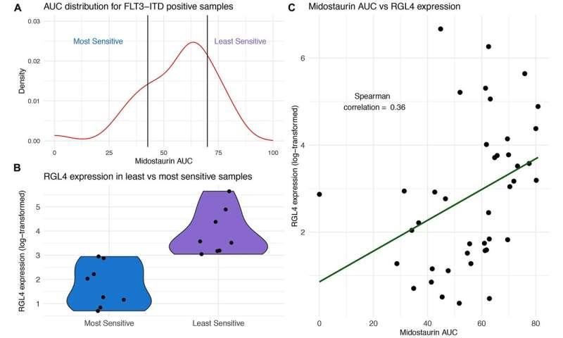 Oncotarget: Genomic markers of midostaurin drug sensitivity in leukemia patients