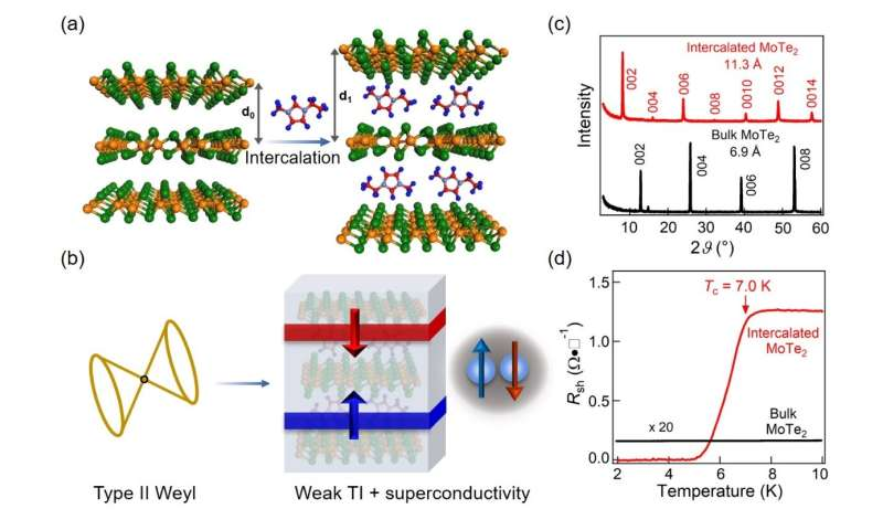 Organic-cation intercalation: An effective strategy for manipulating band topology and superconductivity