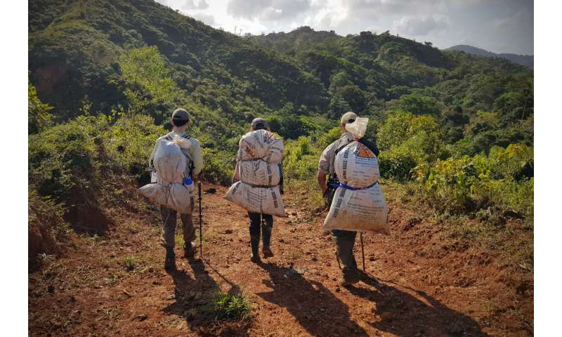 Panamanian field expeditions examine how species persevere in face of climate change