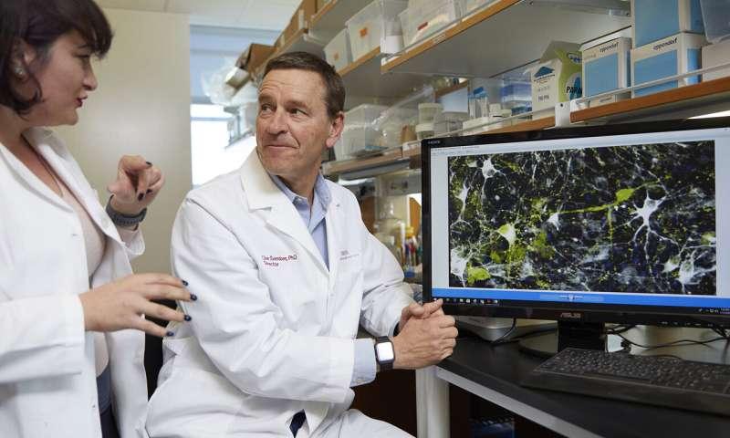 Parkinson's disease may start before birth
