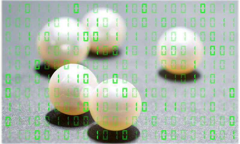 Pearls may provide new information processing options for biomedical, military innovations