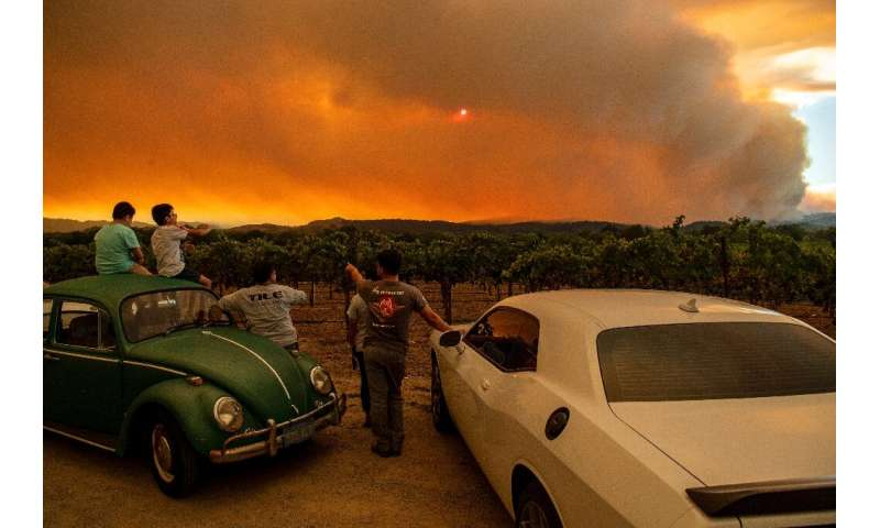 People watch the Walbridge fire, part of the larger LNU Lightning Complex fire, from a vineyard in Healdsburg, California on Aug
