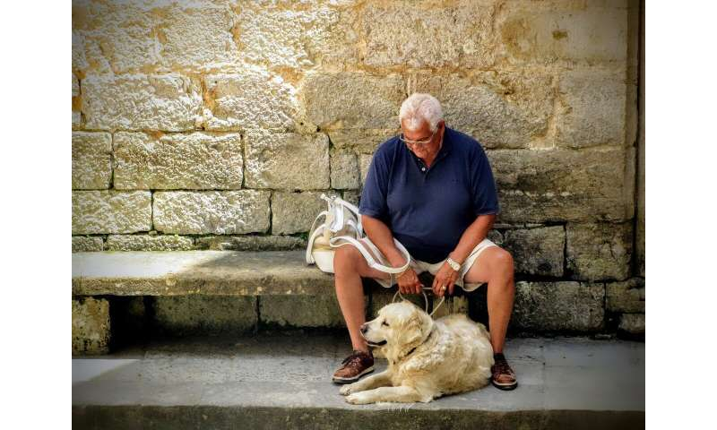 Pets may protect against suicide in older people