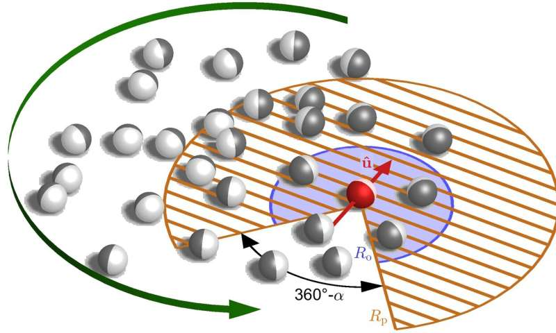 Physics principle explains order and disorder of swarms