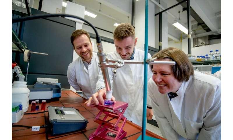 Plasma-driven biocatalysis