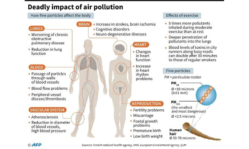 PM2.5 pollution is small enough to enter the bloodstream via the respiratory system, leading to asthma, lung cancer and heart di