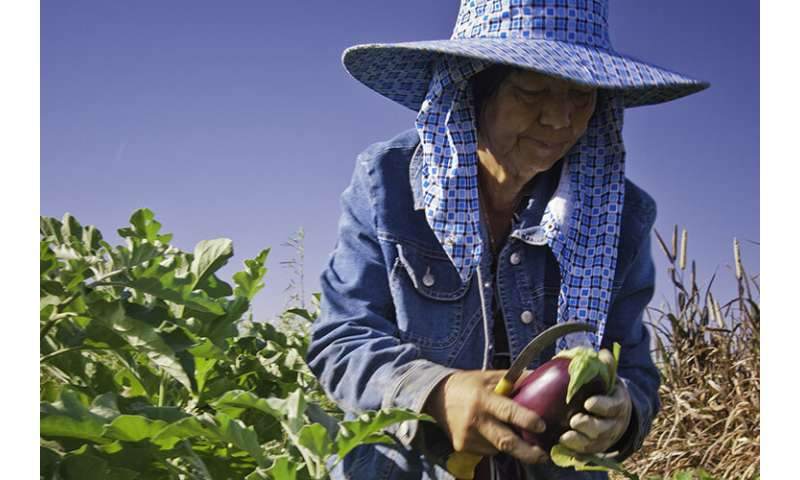 Poll finds broad support for farmworkers who labor through pandemic