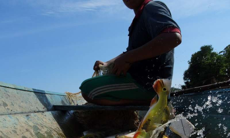 Poor Amazonians go hungry despite living in one of the most biodiverse places on Earth