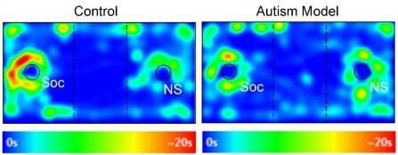 Powerful drug discovery protocol for autism is accelerating the development of new treatments