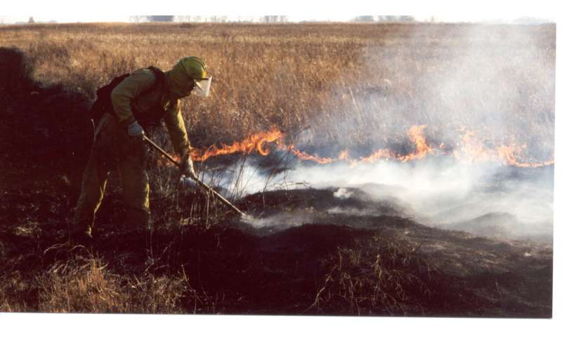 Prairie plants need fiery romance