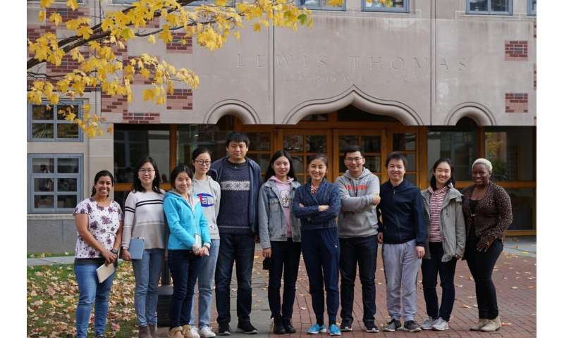 Princeton's Nieng Yan tackles long-standing mysteries about membrane protein structure