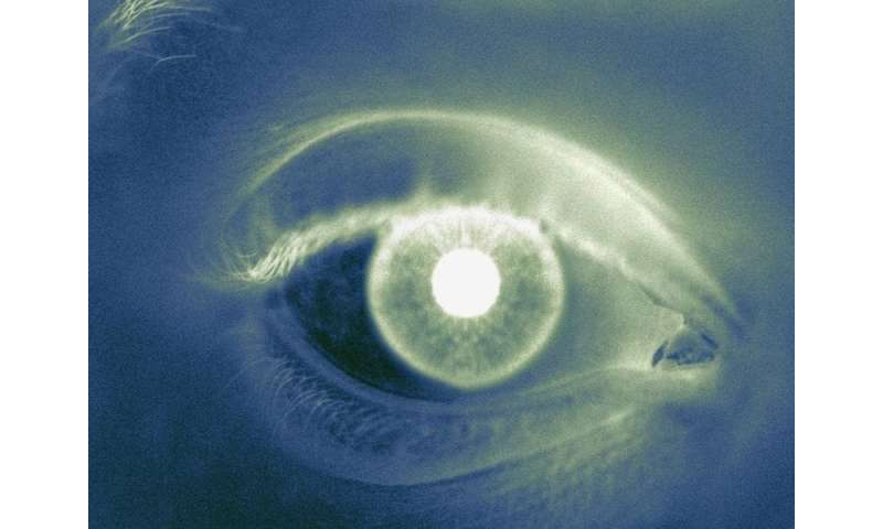 Progressive MS linked to faster retinal atrophy than RRMS
