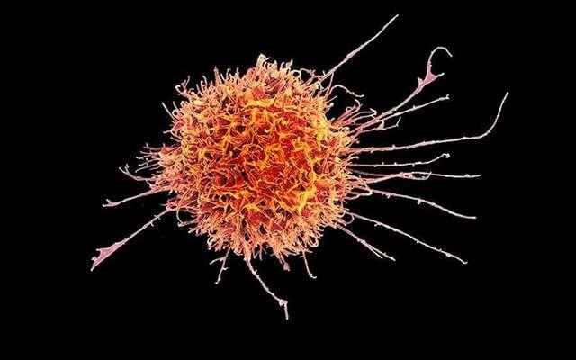Putting 'super' in natural killer cells