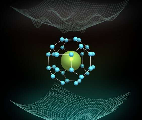 Quantum fluctuations sustain the record superconductor