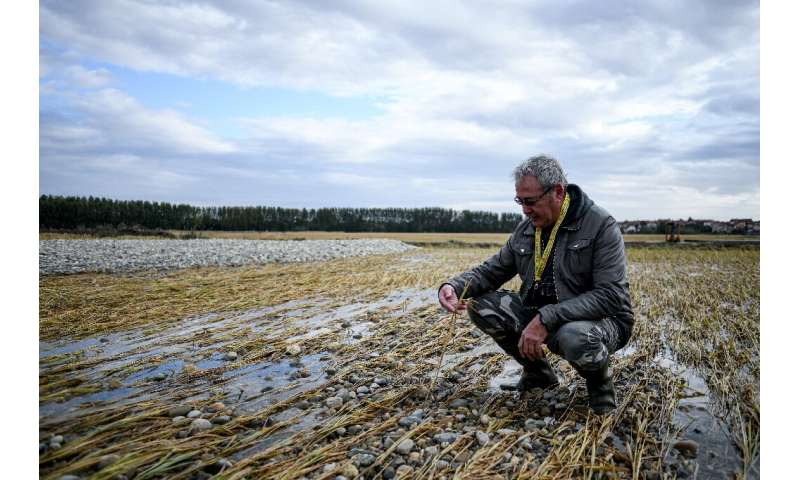 """""""My whole farm was under two metres of water,"""" said rice grower Felice Iato, 60"""