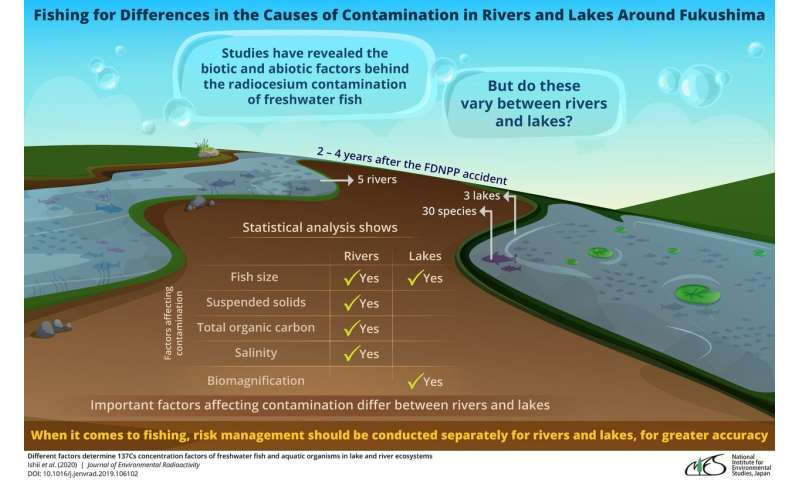 Radionuclide levels in freshwater fish differ between lakes and rivers