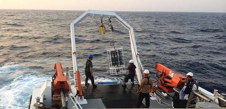 Red Sea plankton communities ebb and flow with the seasons