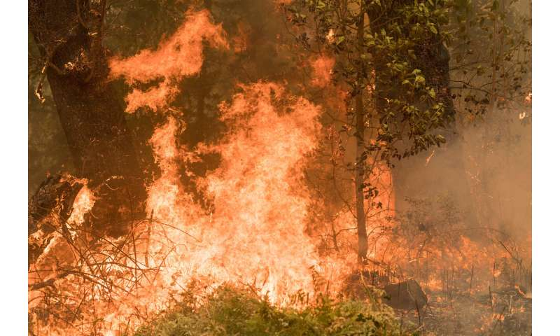 Research will help land managers take risk-analysis approach to new wildfire reality
