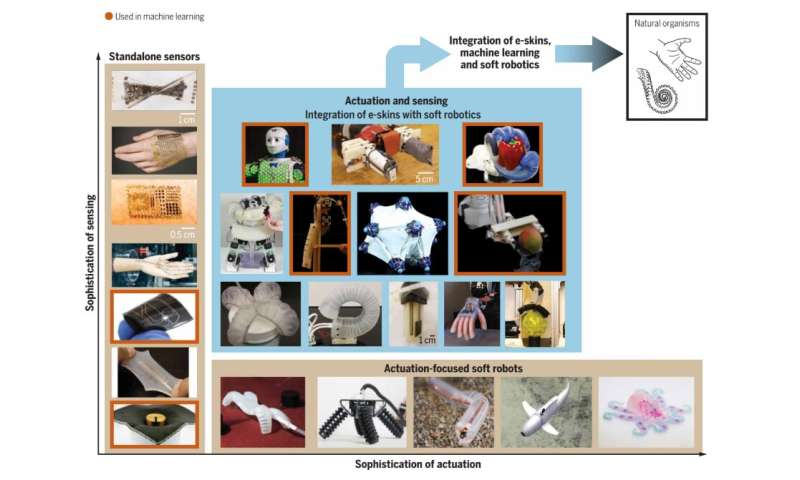 Reviewing progress in the development of machine learning-enhanced e-skins