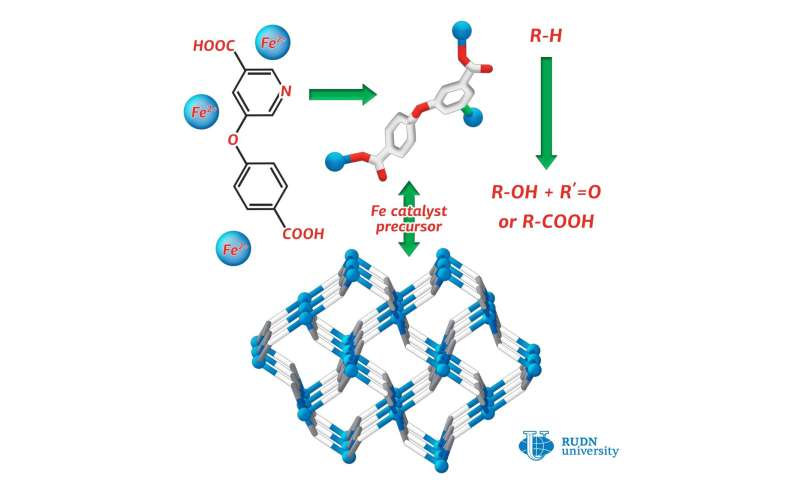 RUDN chemist synthesized iron coordination polymer with the nicotinic acid derivative